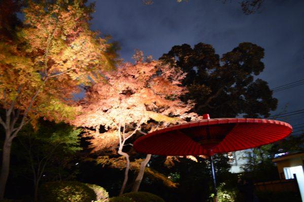 茶屋と紅葉