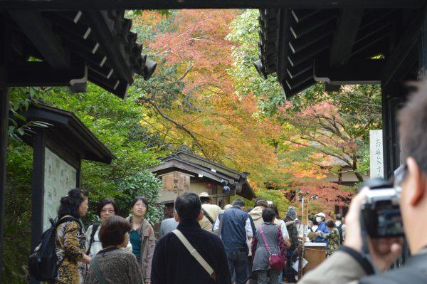 常寂光寺~小塩民宿 京都方面は運転が激しいのは本当でした・・・