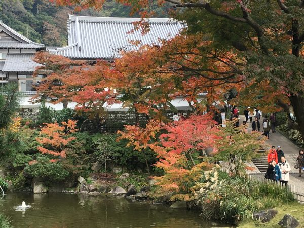 円覚寺の池の紅葉