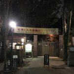 「六義園」3万坪の庭園に咲き誇る「紅葉」とライトアップが美しい!!!