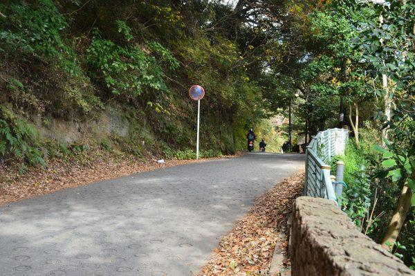 源氏山の坂