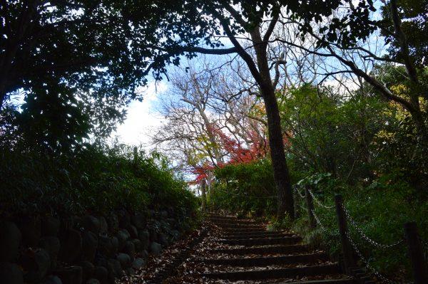 源氏山公園内