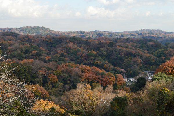 鎌倉の山々