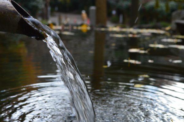 葛原岡神社の池