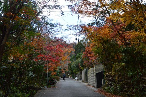 海蔵寺への道