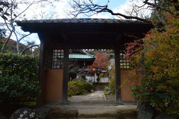 海蔵寺山門横