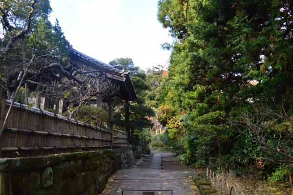 寿福寺の路地裏