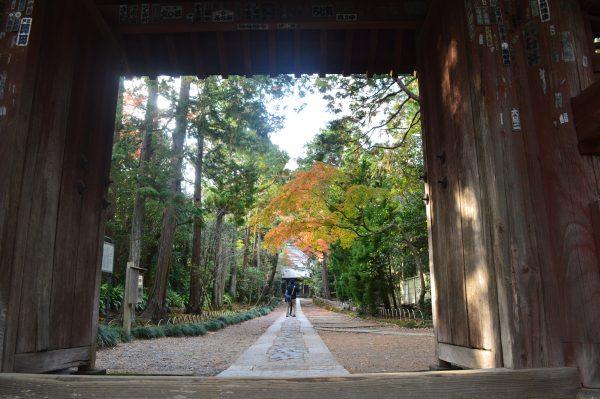 寿福寺の参道