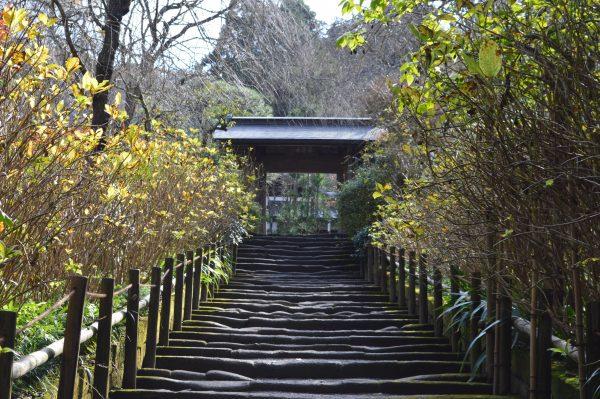 庭園への参道