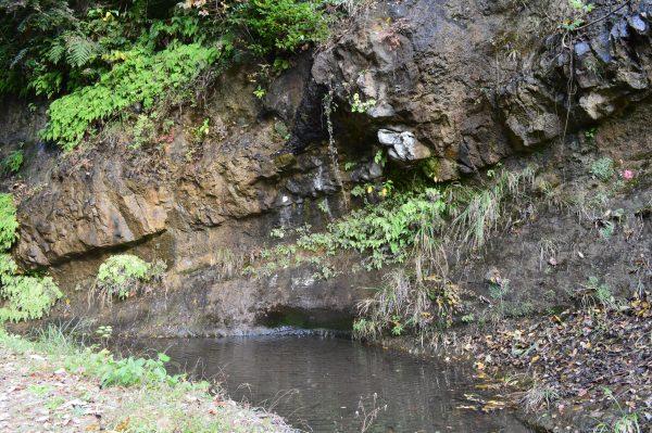 回春院のた岩