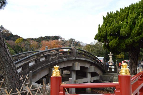 鶴岡八幡宮の橋横から