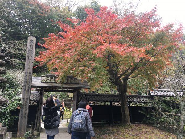 東慶寺の本堂山門