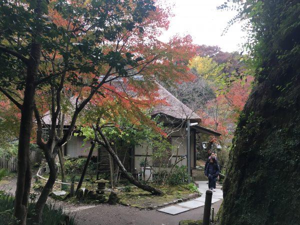 古民家見学もできる鎌倉「浄智寺」御朱印巡りもオススメ!謎のアートを発見