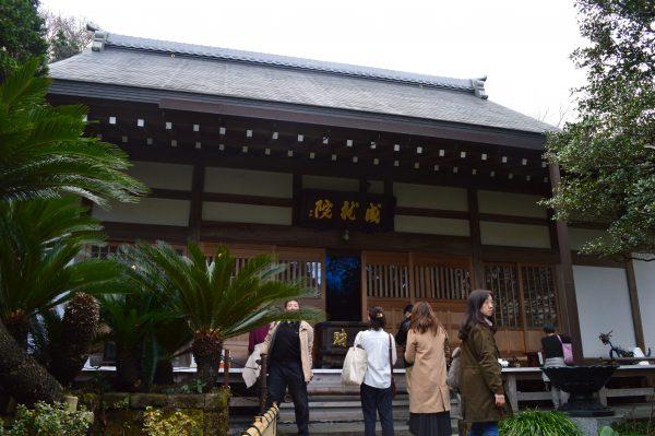 創建800年!鎌倉「成就院」美しいあじさい寺!!!