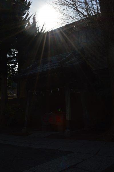 蛭子神社と日差し