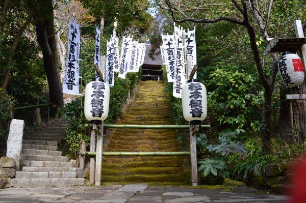 鎌倉駅から「杉本寺」へアクセス!苔の階段と十一面観音は必見!!!