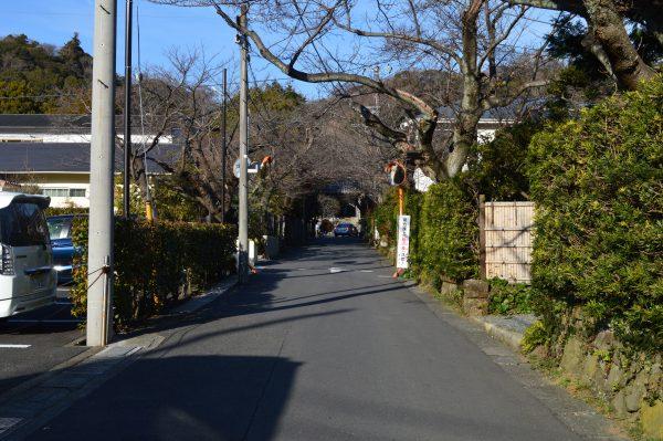 浄妙寺前の道路