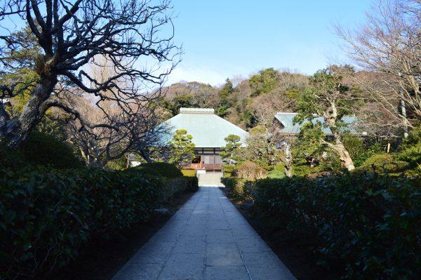 浄妙寺本堂前の参道