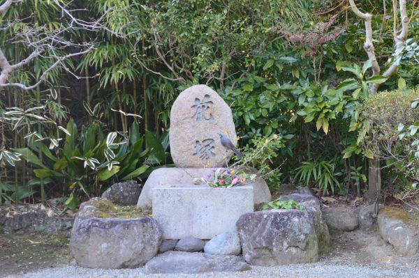 浄妙寺花塚と鳥達