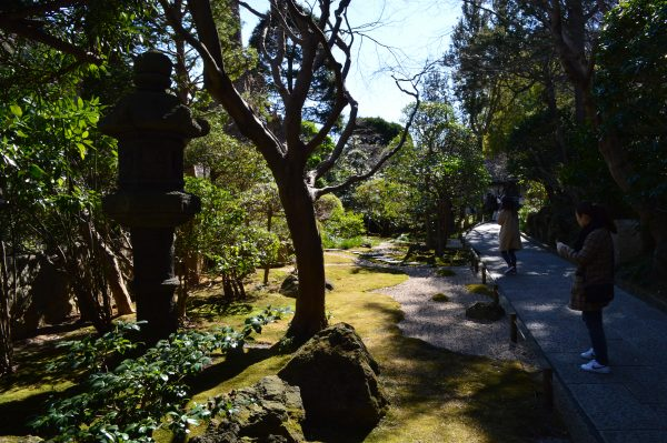 報国寺 境内の庭