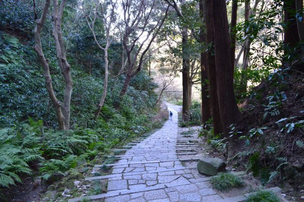 瑞泉寺 石段