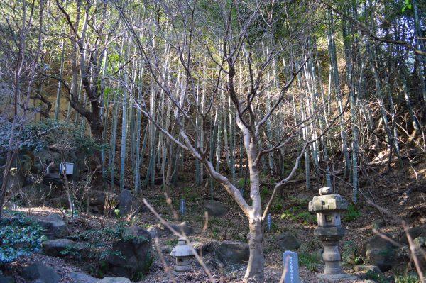 鎌倉宮 庭園