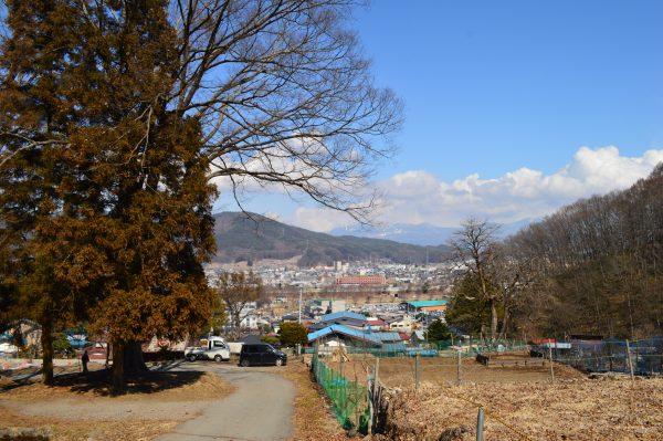 諏訪大社上社前宮からの八ヶ岳