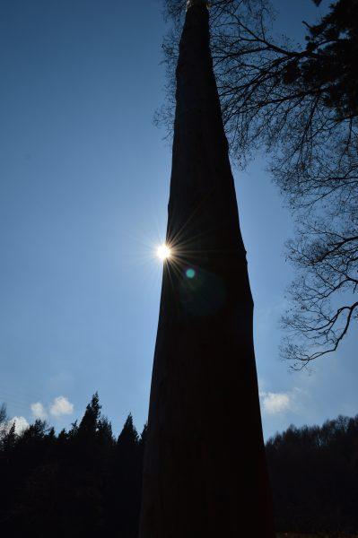 諏訪大社上社前宮 御柱と太陽